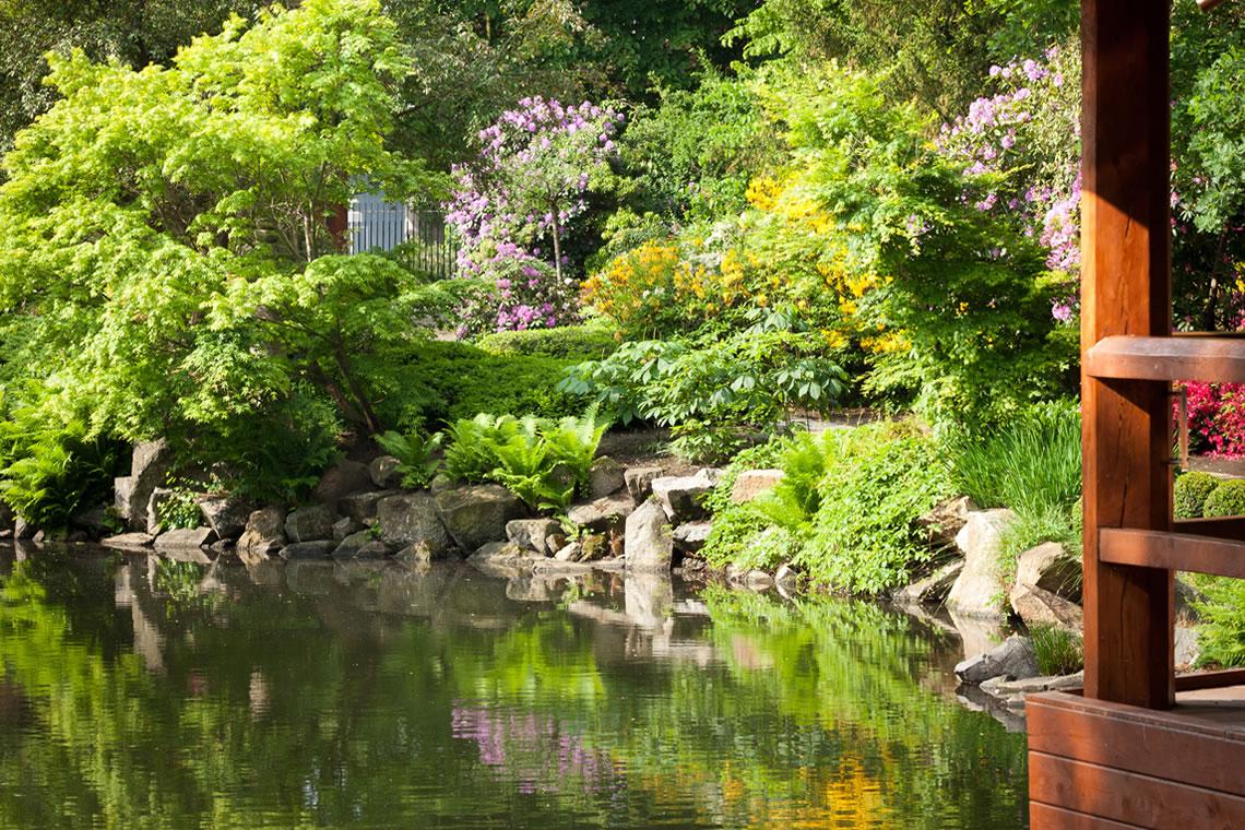 Giardino giapponese un giardino giapponese nel cuore di for Giardini giapponesi milano