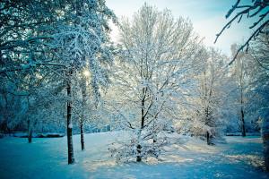 Neve a Breslavia