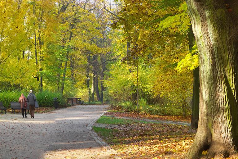 Park Szczytnicki – Parco Szczytnicki